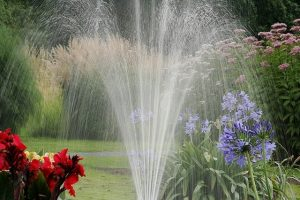 water lawn in spring to help overseeding